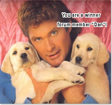 hasselhoff_with_puppies